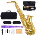 Professional Eb Alto Saxophone with Case and Accessories